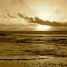 """""""Eye Of The Storm In Sepia"""" by Tim&Paria Sauls"""