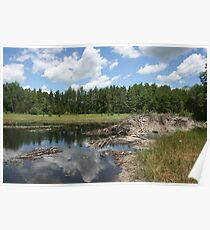 Beaver Lodge Lake Poster
