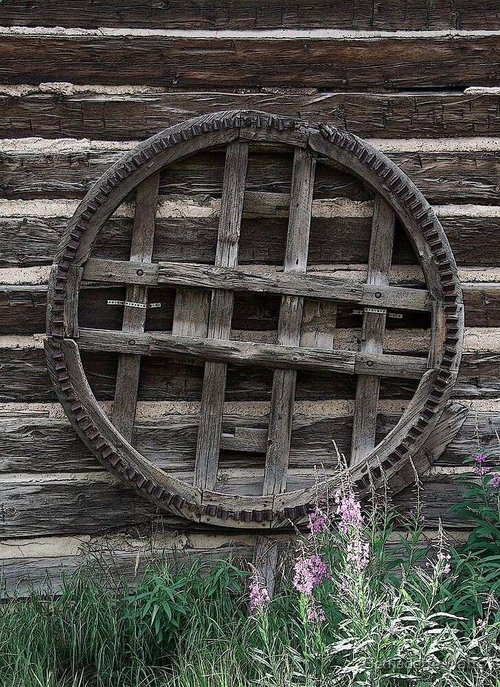 Wheel Wall by Bernadette Watts
