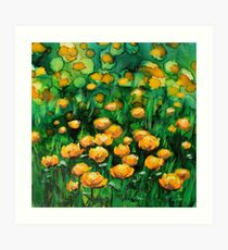 Yellow Blooms. I love Buttercups.  Kunstdruck