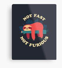 Not Fast, Not Furious Metal Print