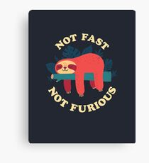 Not Fast, Not Furious Canvas Print