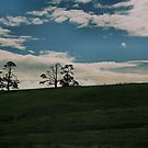 farm scape by scarlettheartt