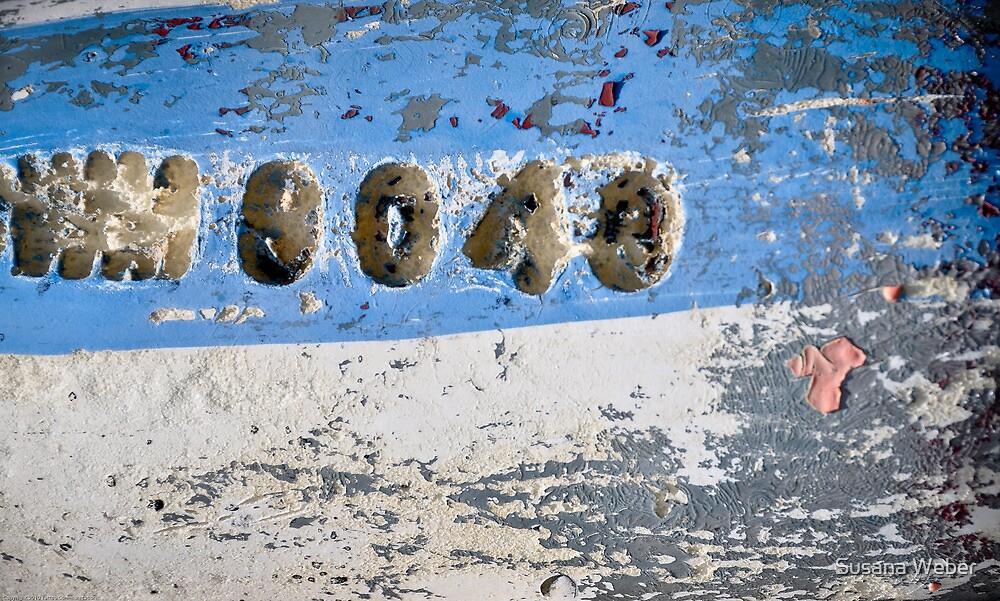 0043 by Susana Weber