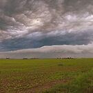 Prairie Roller by Ogre