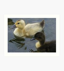 vice versa - opposite duckies! Art Print