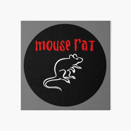 Mouse Rat Art Board Print