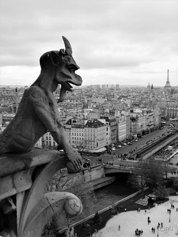 Gargoyle of Paris by CJR4