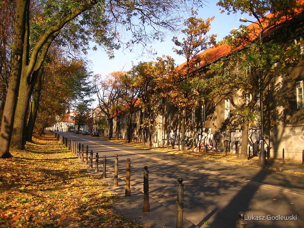 Autumn in Professors Colony #2 by Lukasz Godlewski