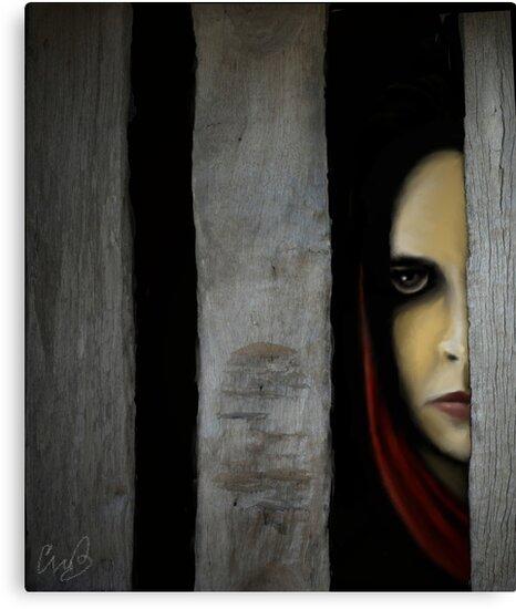 The Prisoner by collin