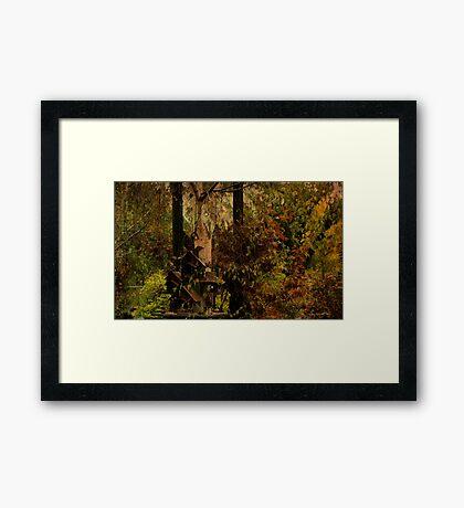 Finding Framed Print