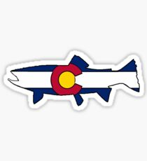 Colorado flag trout fish Sticker