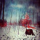 Mid-winter Fantasy by Dirk Wuestenhagen