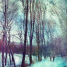 Winter Stroll by Dirk Wuestenhagen
