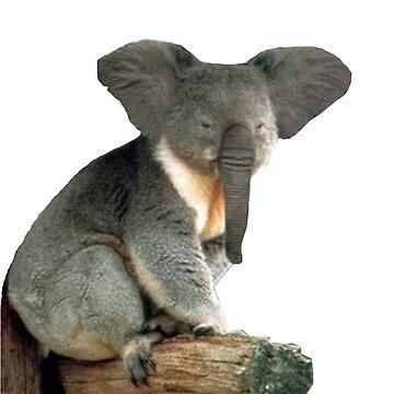 Elefante Koala de IllTrill