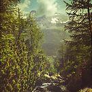 Italian Alps - Lombardia by Dirk Wuestenhagen