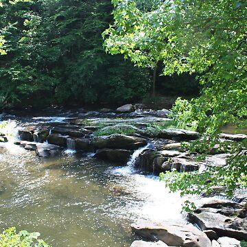 A Beautiful Stream by Misawalk