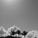 Jupiter Beach  by bluemoondc