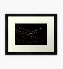 """Misty Web"" Framed Print"