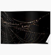 """""""Misty Web"""" Poster"""