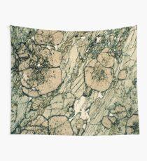 Granatkristalle in Pyroxen & Quarz Wandbehang