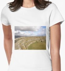 Ancient Stones Donegal, Ireland Womens Fitted T-Shirt
