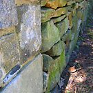 Just A Stone Wall.... Really by Debbie Robbins
