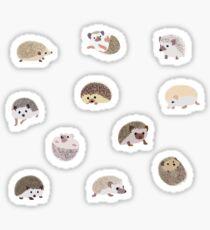 Hedgehog Sticker Pack Sticker