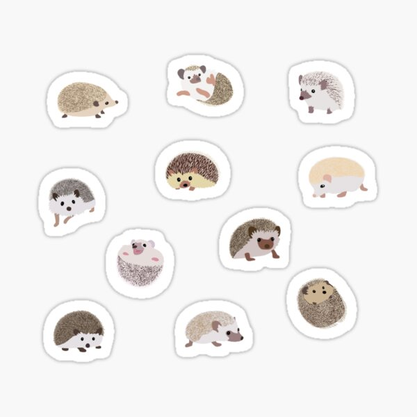 Hedgehog Sticker Pack Sticker