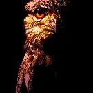 Tawny Frogmouth - The Nightjar (2009) by Neil Ross
