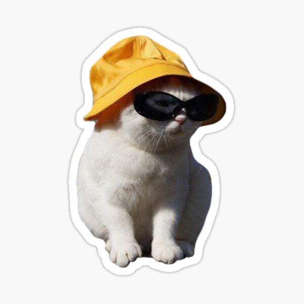 bucket hat cat Sticker