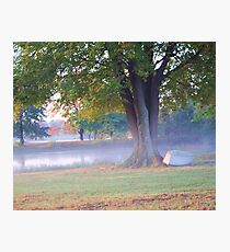 THE POND IN FOG Photographic Print