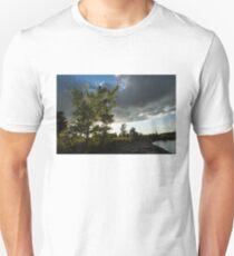 Cottonwood Tree Dramatic Light T-Shirt
