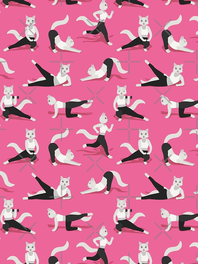 Fitness Cats on pink by nadyanadya