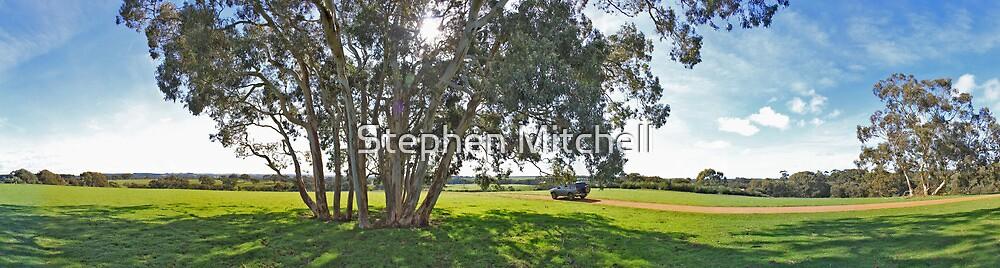 Islander Estate Backyard by Stephen Mitchell