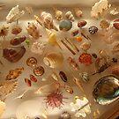 Sea treasures by nt2007