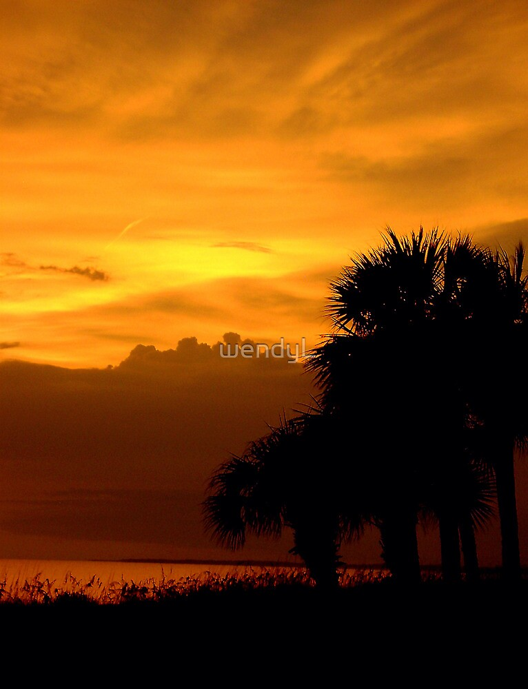 tropic explosion by wendyL