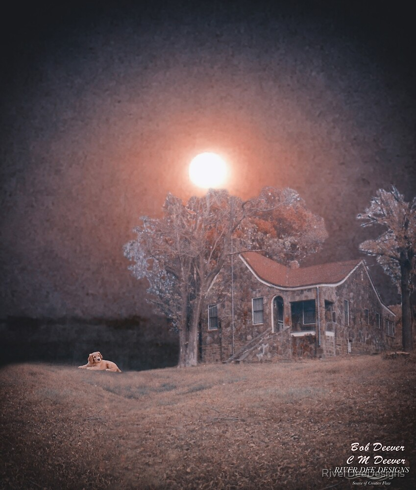 Wise Moon Hovers Over Home by RiverDeeDesigns