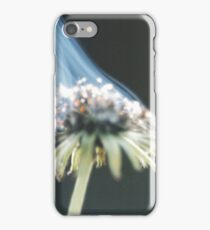Up In Flames iPhone Case/Skin