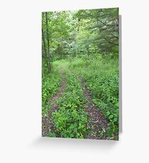 Cabin Trail Greeting Card
