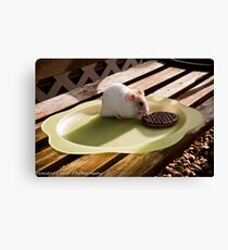 hamster tea break Canvas Print