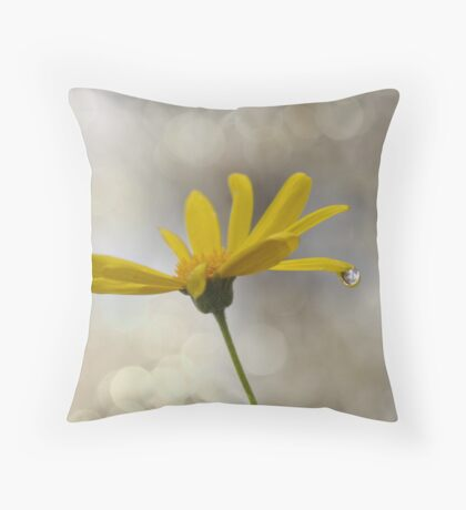 You Brighten My Day  Throw Pillow