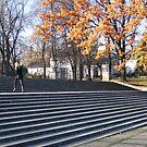 Stairs in Park Rydza Śmigłego in Warsaw, Poland by Lukasz Godlewski