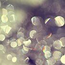 Tiny Pearls Of Light by ameliakayphotog