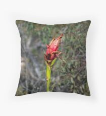 Gymea Lilly Throw Pillow