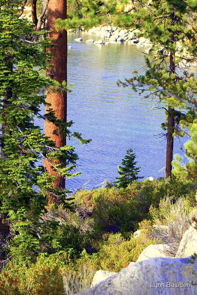 """""""Tahoe Blues"""" by Lynn Bawden"""