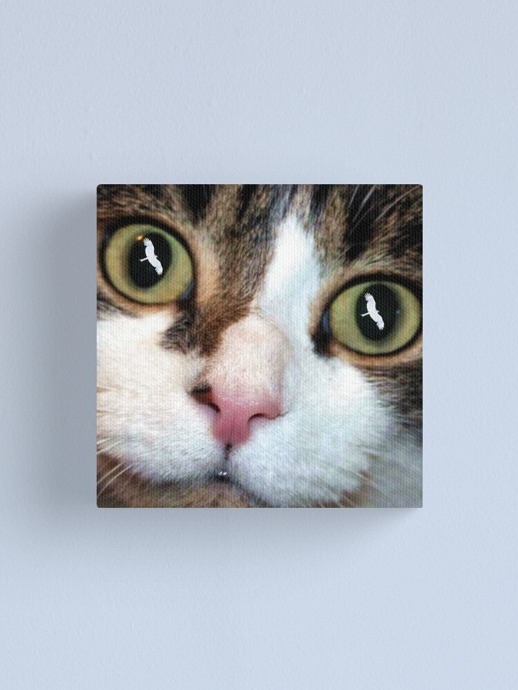 Alternate view of Cats Eyes Canvas Print