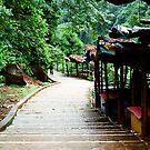 Stairs to Marleshwar Cave Temple, Konkan by Biren Brahmbhatt