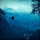 Blue Mountain Haze by Dirk Wuestenhagen