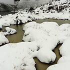 Images of Tasmania, by David Murphy by David Murphy